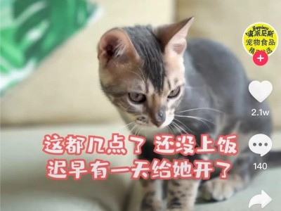 开播三天单场破10万!一万粉国产猫粮抖音直播带货如何实现逆风翻盘?